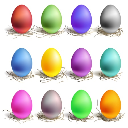 animal nest: Color easter eggs in the nest, set of colour Illustration