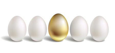 chosen one: Gold Vector Egg Concept. White and unique golden eggs Illustration