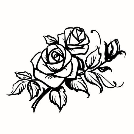dessin au trait: Black Roses dessin d'ensemble sur fond blanc Illustration