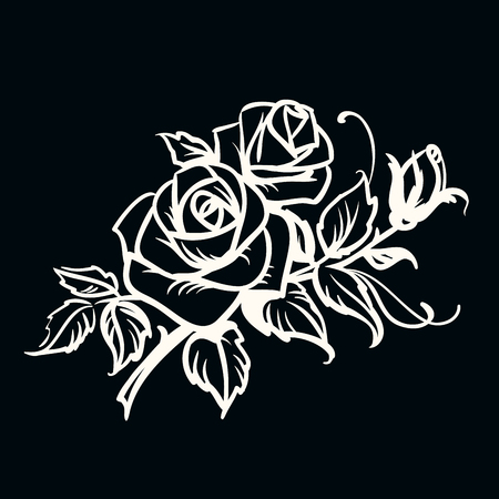 Roses. White outline drawing on black background  Vector