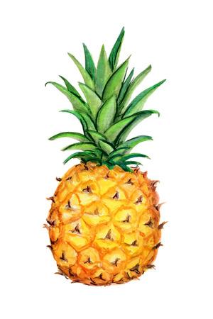 파인애플. 흰색 배경에 고립. 열대 과일의 수채화 세공 그림입니다. 오렌지 노란색, 녹색, 흰색 지배적 인 색상 손으로 그린 그림