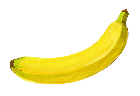dominant color: Banana. Isolated on a white background. Watercolor handwork illustration of tropical fruit. Hand drawn painting with yellow green white dominant color