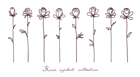 doodled: Roses. Collection of isolated rose flower sketch on white background. The continuous line doodled design.