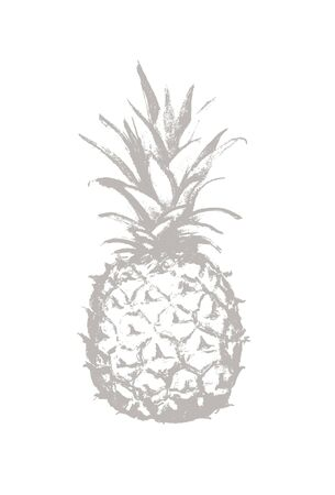 Pineapple pencil drawing icon. Tropical exotic fruit shape pattern. Outline icon. Vector graphics Illustration