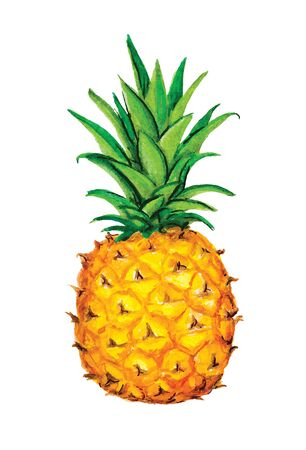 Pineapple icon. Tropical exotic fruit shape pattern. Pineapple hand drawn watercolor vector graphics. Vector Illustration