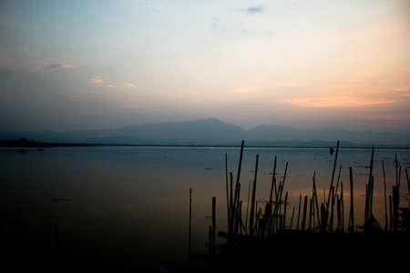 million fish: Lake  phayao  Thailand