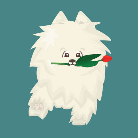 White fluffy cute cartoon happy isolated vector flat dog on blue background is going to somewhere, red tulip as a gift is in mouth Stock Illustratie