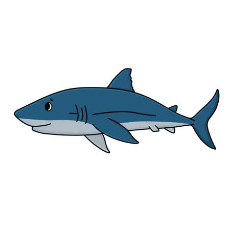 Vector cartoon doodle shark from the ocean or sea. Outline animal is isolated on white background for kid books or prints on t-shirts. Animal is moving to somewhere