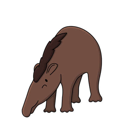 Vector brown cute outline doodle cartoon young funny tapirus pinchaque wild South American mountain tapir. Isolated illustration on white background, front side view, eyes are closed, bent down.