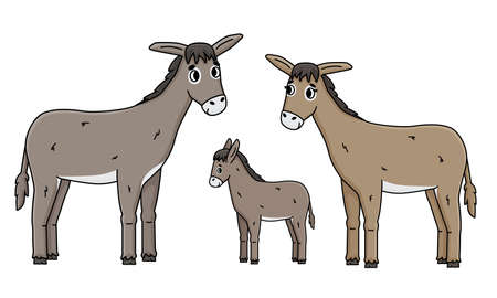 Cute outline cartoon hand drawn donkey family. Gray Male father, brown female mother with eyelashes and foal baby kid vector doodle farm animals isolated illustration on white background, side view