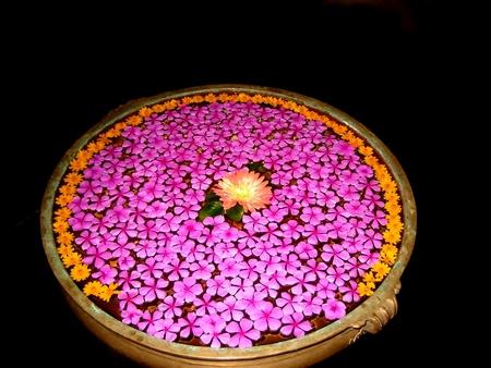 petals of flowers in a vase
