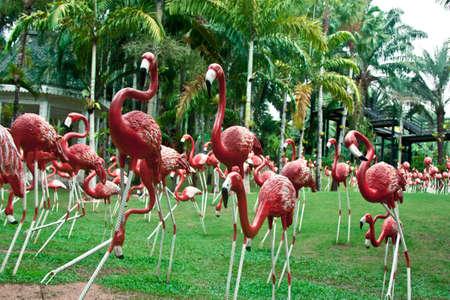 exotics: flamingo