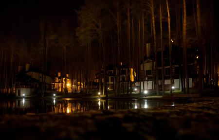 beautiful sad night winter landscape on the lake Stock Photo