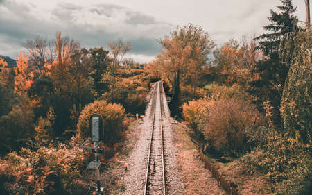 Train track on a bridge across the river in the autumn time with deciduous trees. Railway. Stok Fotoğraf