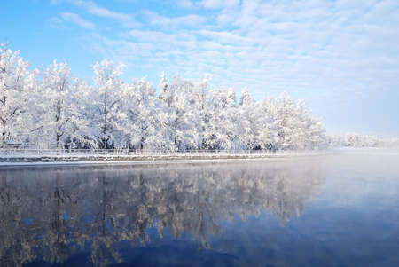 Snow-covered trees reflecting in the icy water of Imatra reservoir. Finland