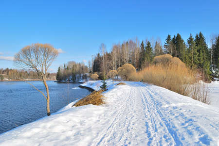 Beautiful nature of Finland in a sunny  spring day  photo