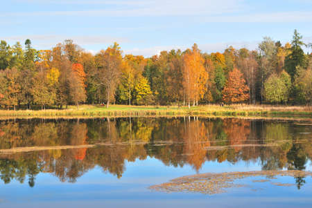 Beautiful autumn trees and lake in the vicinity of St  Petersburg photo