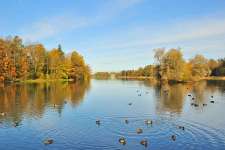 St. Petersburg, Gatchina. Beautiful lake and forest in autumn photo
