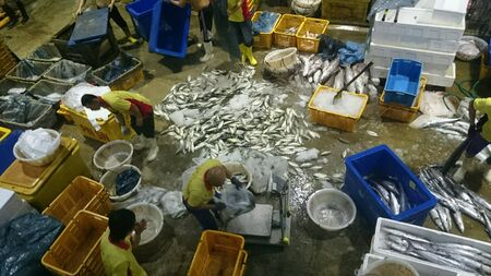 fishery: Fishery Port in Singapore