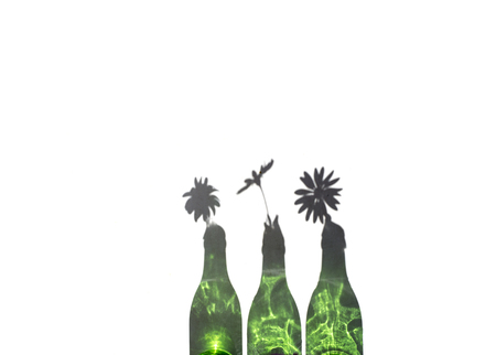 Daisies in Green Bottle with the green glass reflection