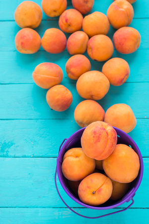 steel bucket: Apricot harvest in small steel bucket on a background of scattered apricots on table Stock Photo