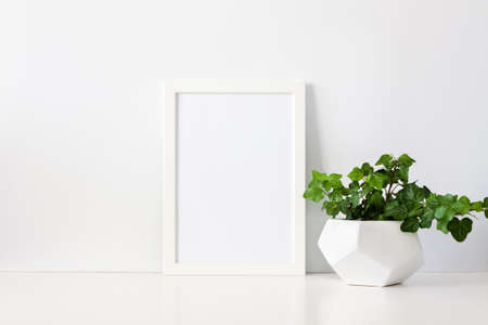 A single green plant against a blank white wall. Frame mockup .. Ivy in a geometric pot. An isolated object. Foto de archivo