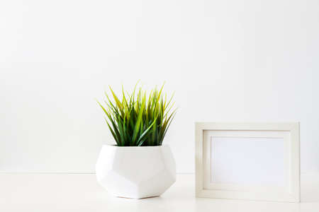 A single green plant against a blank white wall. Mockup frame. Grass in a geometric pot. An isolated object. Panorama