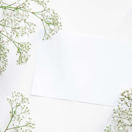A white mockup surrounded by dried wild flowers