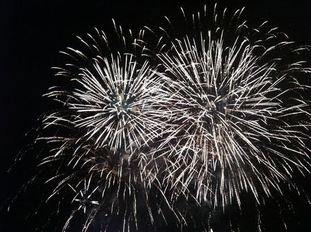 national day: Firework for celebration national day