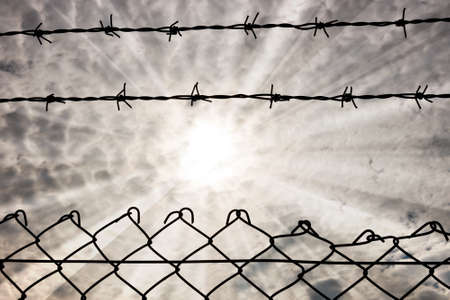 galvanised: wire fence