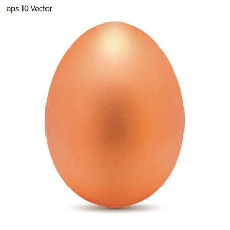 testicle: Bronze egg. Vector