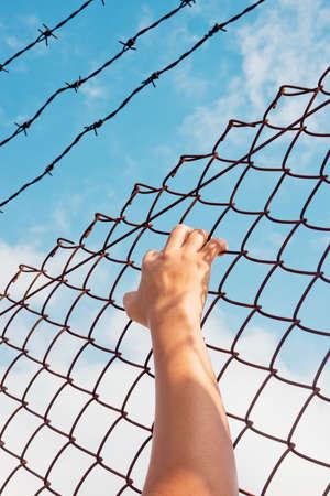 preso: mano en la cárcel Foto de archivo
