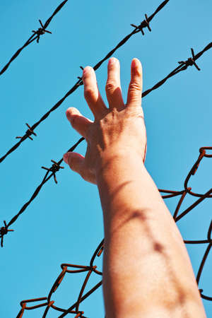 incarcerated: freedom