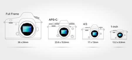 Digital camera sensor format (on scale 1: 1)