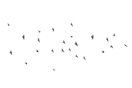 Silhouette of a flock of flying birds Archivio Fotografico - 126860652