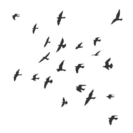 Silhouette of a flock of flying birds Archivio Fotografico - 126860658