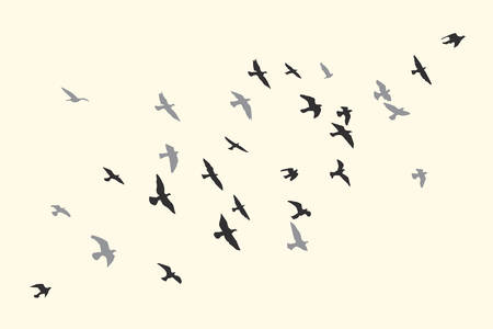 Silhouette of a flock of flying birds Archivio Fotografico - 126860743