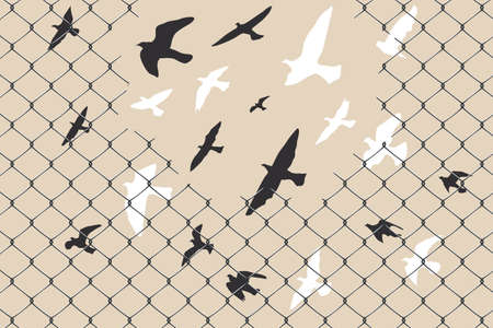 Birds flying over broken barbed wire Archivio Fotografico - 127100124