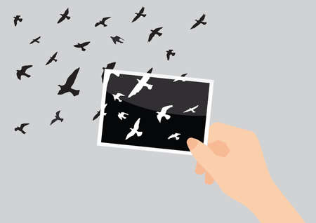 Pigeons fly out from the photo Ilustrace