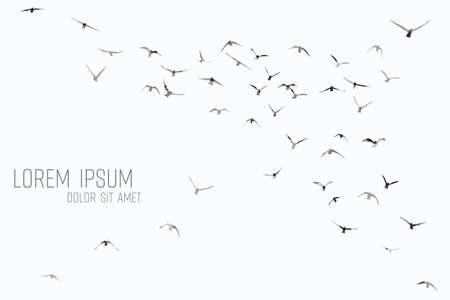 Silhouette of a flock of flying birds Фото со стока - 130799268
