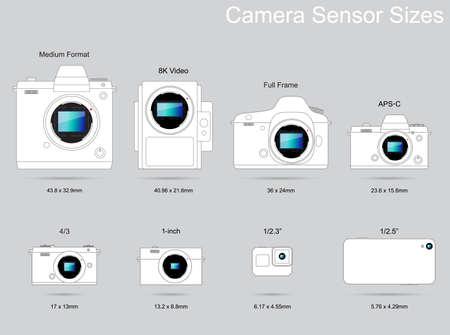 Guida alla fotografia delle dimensioni del sensore della fotocamera Vettoriali