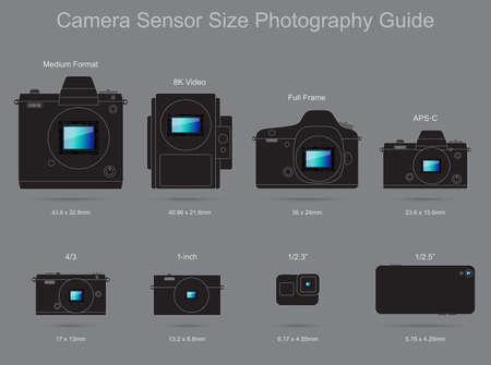 Camera Sensor Size Photography Guide  イラスト・ベクター素材