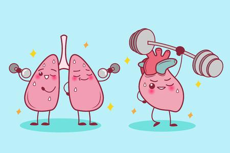 Nettes Karikaturherz und Lunge tun Sport Vektorgrafik