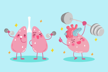 Cute cartoon lung and heart do exercise on green background