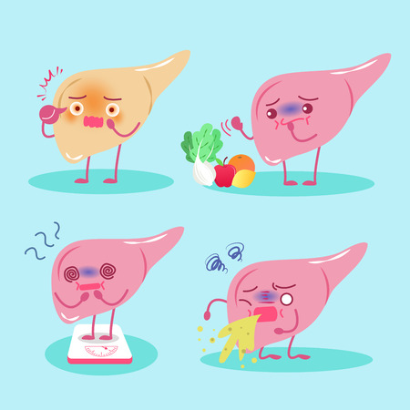 Cute cartoon liver with health concept on green background