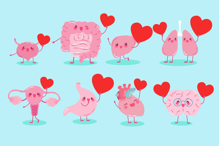 cute cartoon different organ hold heart on background Illustration