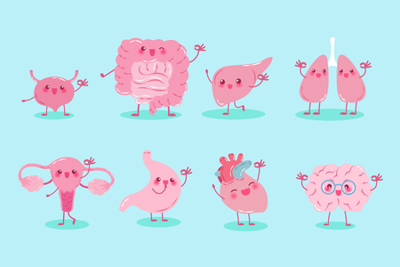 cute cartoon different organ show ok to you Illustration