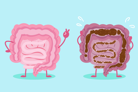 Cute cartoon intestine with health concept on green background.