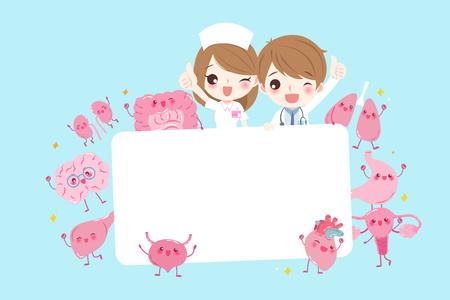 cute cartoon doctor take billboard with organ on the blue background