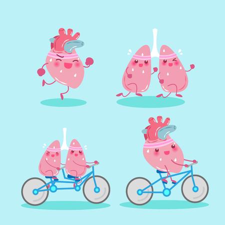 deportes caricatura: Un pulmón y un corazón de la historieta hacen ejercicio en el fondo verde.